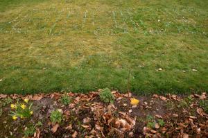 Zuidhorn, 2010, Vooraanzicht Groen in het gras, papierstroken