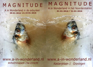 welkom op de finissage op 30 januari 2016 om 17.00 uur bij het Noorderstation , Groningen.
