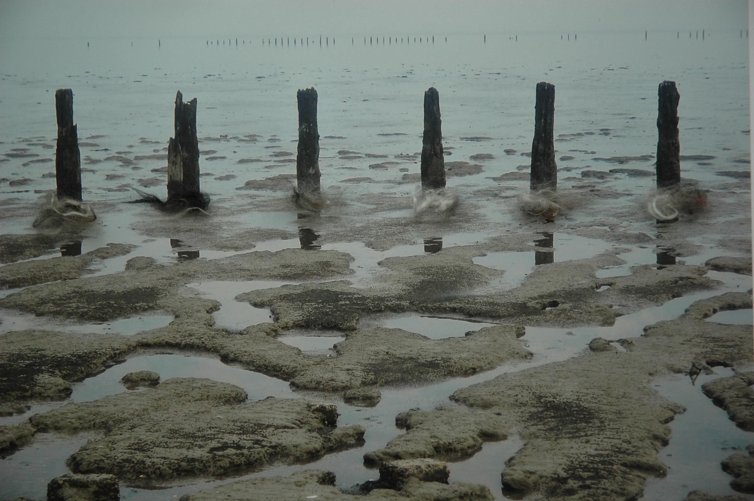 1 Verzet, 2013, 40x30 cm, foto, vilt