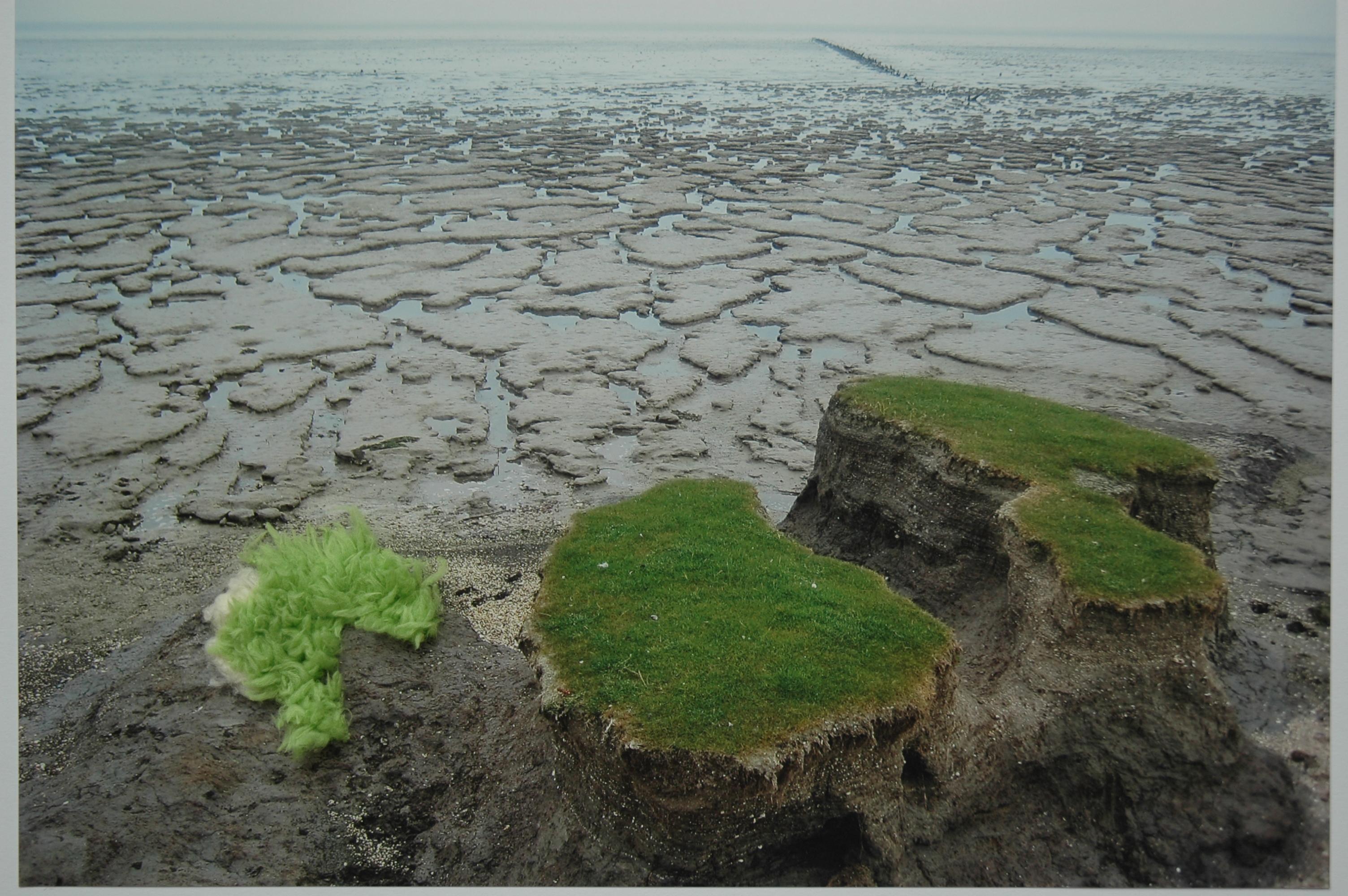 Land, 2013, 40x30 cm, foto, kunstbont